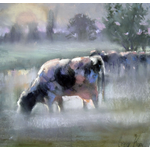 Corry Kooy / Cows in the morning